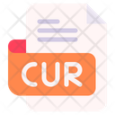 Cur Document File Icon
