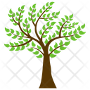 Curry Tree Icon