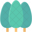 Cypress Tree Evergreen Icon