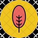 Cypress Tree Stem Icon