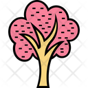 Cypress Tree Shrub Tree Trees Icon