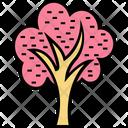 Cypress Tree Shrub Tree Trees Icon