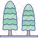 Cypress Tree Greenery Nature Icon