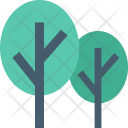 Trees Ecology Cypress Icon