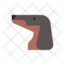 Dachshund Canine Purebred Icon