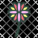 Dahlia Flower Floral Icon