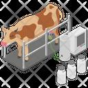 Dairy Farm Milk Yield Milk Processing Icon