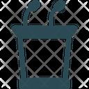 Daise Icon