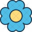 Daisy Floral Flower Petals Icon
