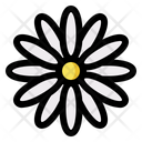 Daisy Flower Floral Icon