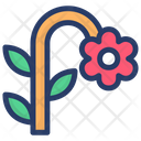 Daisy Flower Chamomile Blossom Icon