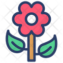 Daisy Flower Icon