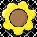 Daisy Flower Blossom Floweret Icon