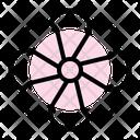 Daisy Flower Blossom Plant Icon