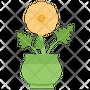 Daisy In Pot Icon