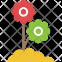 Daisy Plant Icon