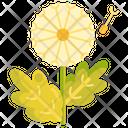 Dandelion Flower Enjoy Icon