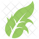 Dandelion Leaf Icon