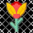 Darwin Tulip Icon