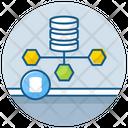Data Architect Icon