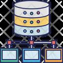 Data Center Data Network Data Sharing Icon