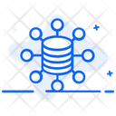 Data Collection Database Dataserver Icon