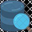 Data Research Storage Search Icon