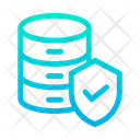 Data Shield Icon