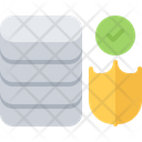 Database Data Shield Icon