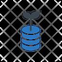 Growth Database Storage Icon