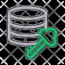 Key Lock Database Icon