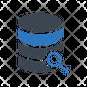 Server Key Lock Icon
