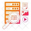 Database Search Network Icon