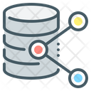 File Share Share Data Icon