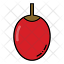 Date Fruit Date Fruit Icon