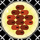 Dates Food Fruit Icon