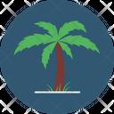 Dates Tree Gulf Tree Palm Garden Icon