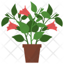 Datura Potted Plant Icon
