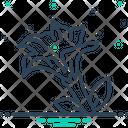 Datura Stramonium Icon