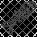 Dead Fish Icon