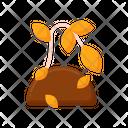 Dead Plant Icon