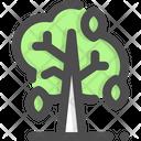 Trees Autumn Tree Deciduous Tree Icon