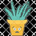 Decorative Cactus Succulent Indoor Plant Icon