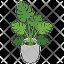 Decorative Plant Icon