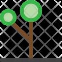 Decorative tree Icon