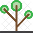 Ecology Garden Nature Icon
