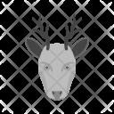 Animal Deer Icon