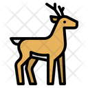 Deer Zoo Animals Icon