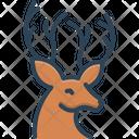 Deer Reindeer Herbivores Animal Icon
