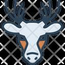 Deer Mammal Reindeer Icon